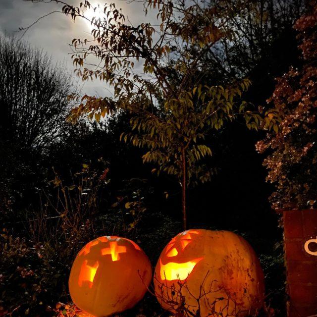 #happyhalloween #pumpkin #pumpkinpatch #pumpkincarving